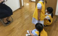 小学校受験 学校別直前講習 森村そっくり模試 申し込み受付中!