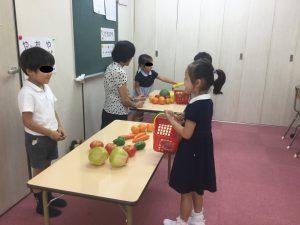 【年中児】小学校受験、いつから始めるのがよいか?